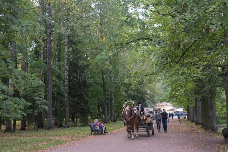 Pavlovsk, St Petersburg, Russland - 10. September 2018 Bespannter Lastwagen mit Touristen am Park stockfotografie