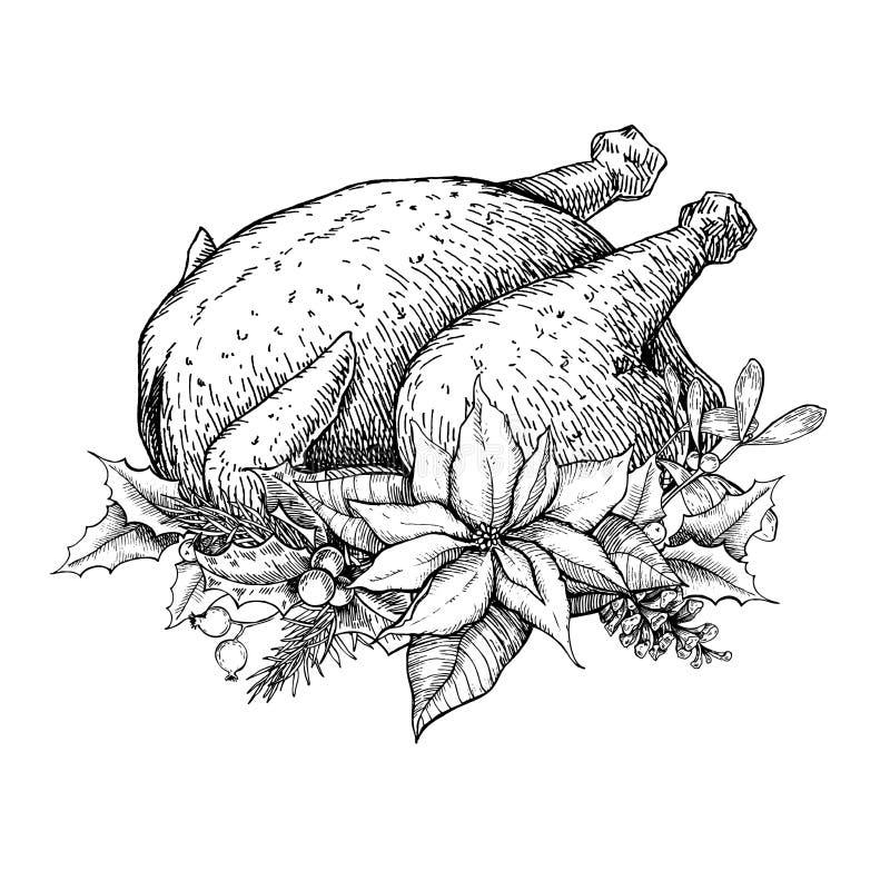 Pavo de la Navidad o de la acción de gracias Ilustración drenada mano del vector stock de ilustración