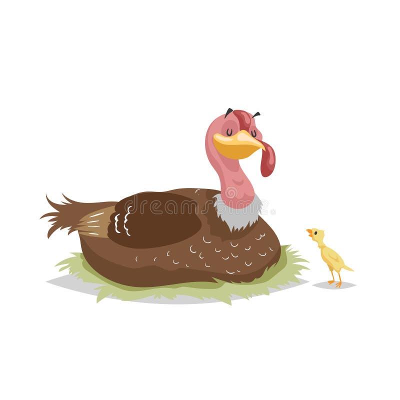 Pavo lindo de la madre que se sienta en jerarquía y el pequeño pavo-poult Animales del campo y familia de pájaro Ejemplo cómico d ilustración del vector
