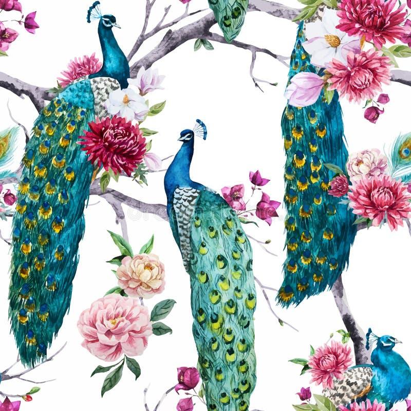 Pavo real de la acuarela y modelo de flores stock de ilustración
