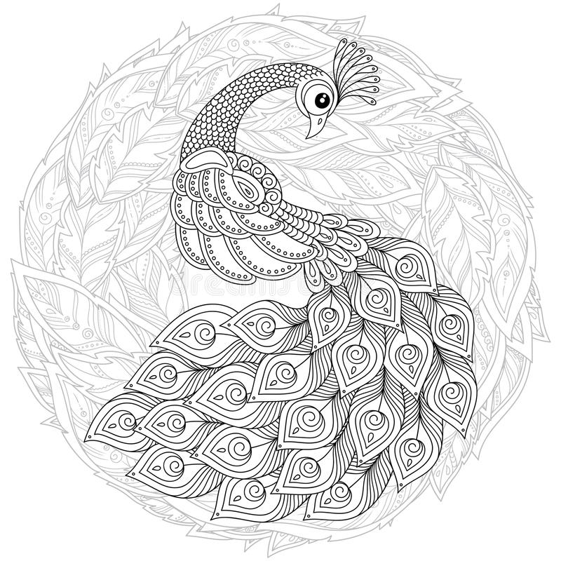 Pavo Real En Estilo Del Zentangle Página Antiesfuerza Adulta Del ...