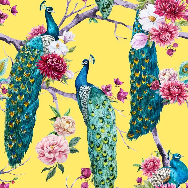 Pavone dell'acquerello e modello di fiori royalty illustrazione gratis