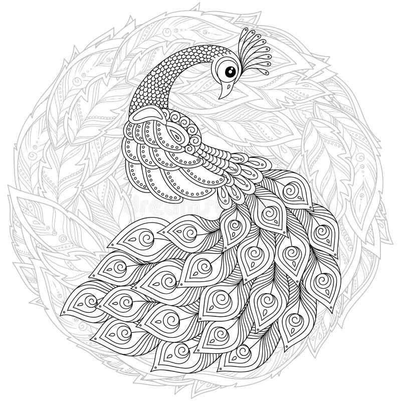 Pavone nello stile dello zentangle Pagina antistress adulta di coloritura illustrazione vettoriale