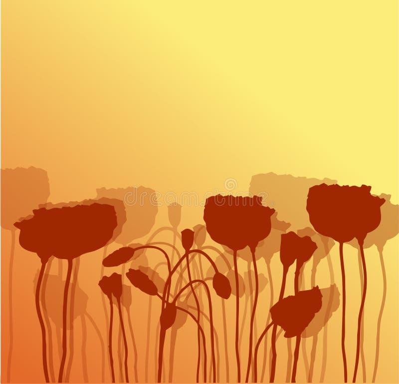 pavot d'illustration de fleur illustration de vecteur