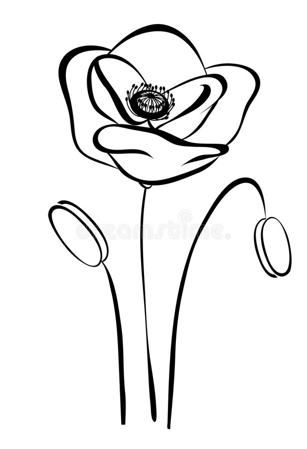 Pavot noir et blanc de silhouette simple. Fleur abstraite illustration libre de droits