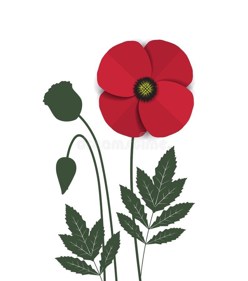 Pavot rouge illustration de vecteur