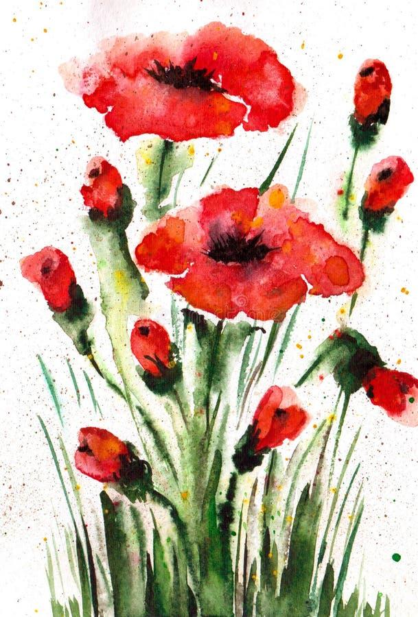 Pavots rouges dans le pré sur un fond blanc Illustration d'aquarelle handmade illustration de vecteur