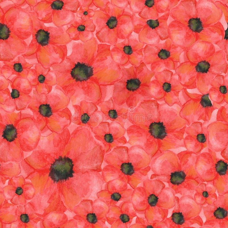 Pavots sans couture de toile de modèle aquarelle tirée par la main botanique illustration stock