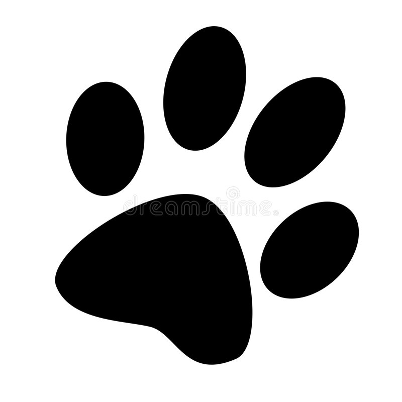 Free Paw Royalty Free Stock Photography - 7063257