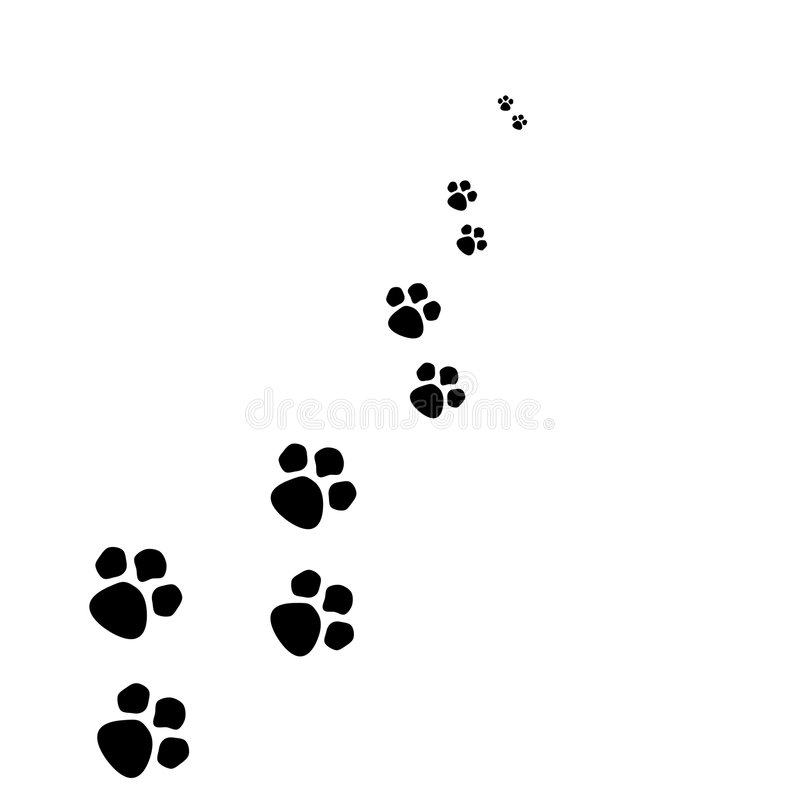 Paw. Tracks of dog/puppy isolated on white