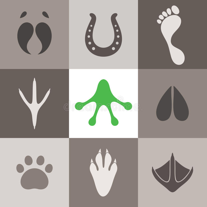 Paw Print vector illustratie