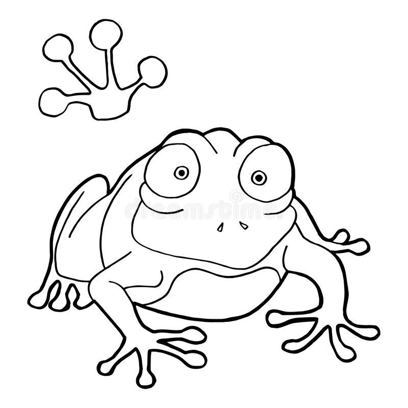 Download Paw Print With Frog Coloring Pages Vector Stock Vector    Illustration Of Amphibian, Image