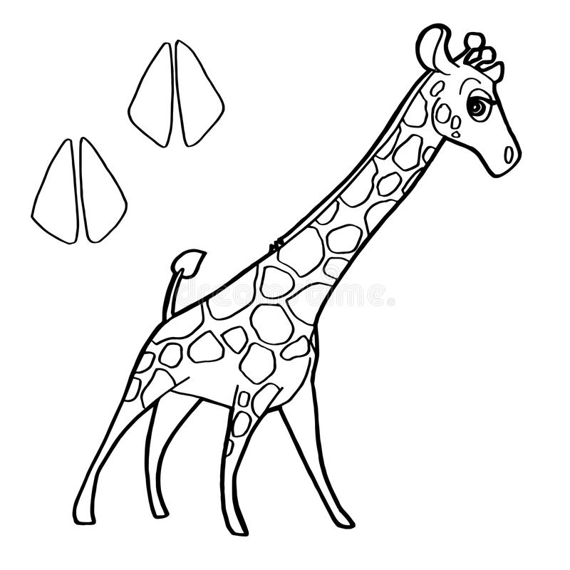 Paw Print With Giraffe Coloring Pages Vector Stock Vector ...