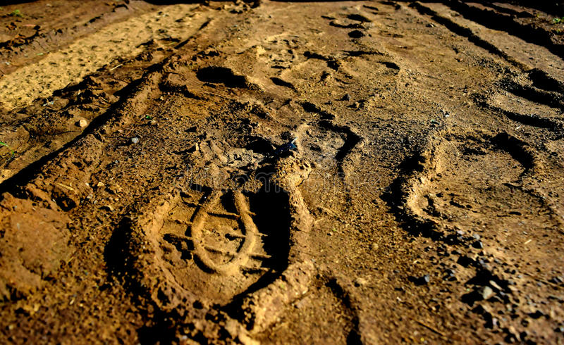 Paw print. In old and historic bridge royalty free stock photos