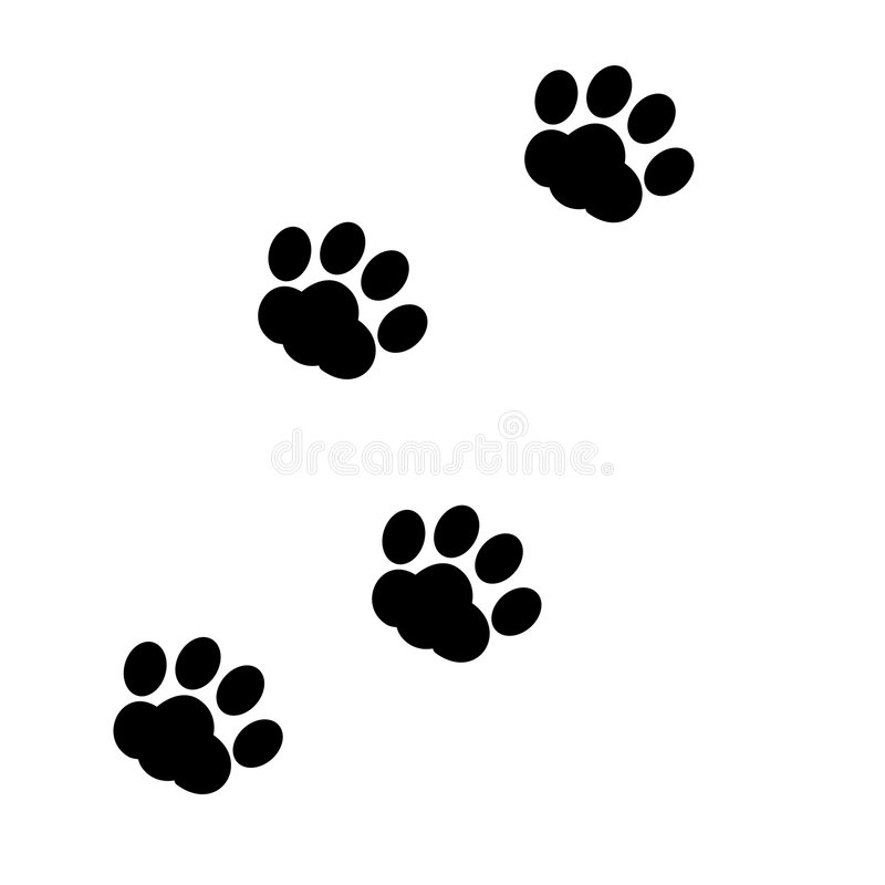 Paw prints. Animal / Dog paw prints right and left