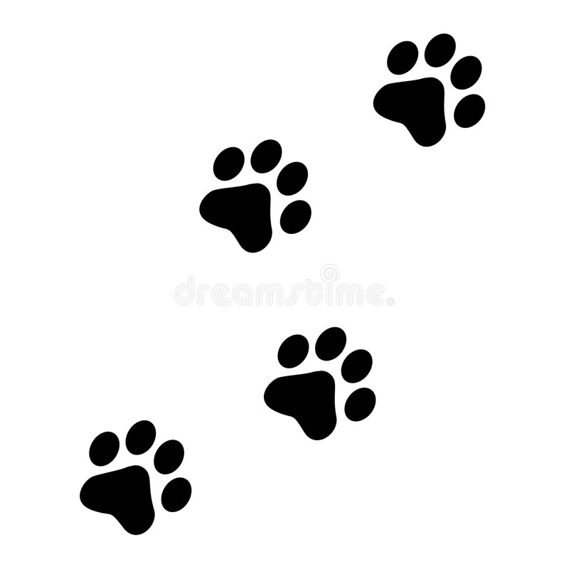 Paw prints stock illustration