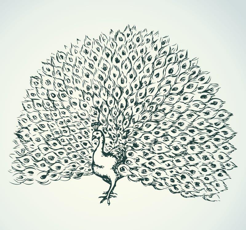 Paw rysuje tła trawy kwiecistego wektora ilustracji