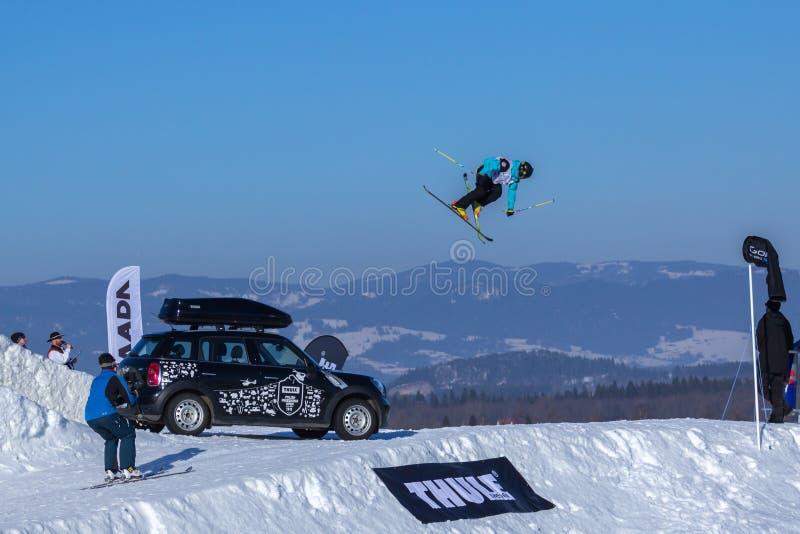 PaweÅ 'Palichleb, Polska narciarka obrazy stock