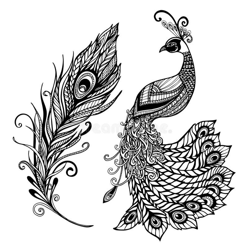 Pawia piórka projekta czerni doodle druk royalty ilustracja