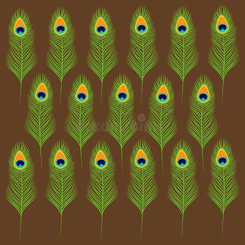 Pawia piórka ustalona kolekcja Egzotyczny tropikalny ptasi kolorowy ogon brązowy linii abstrakcyjne tła zdjęcie Płaski projekt ilustracja wektor