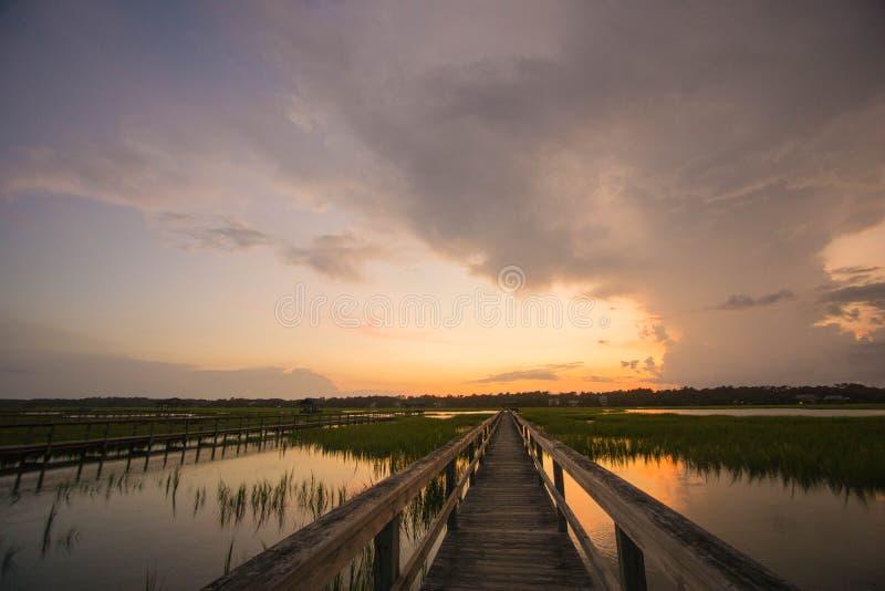 Pawleys-Insel-Sumpf lizenzfreie stockfotografie