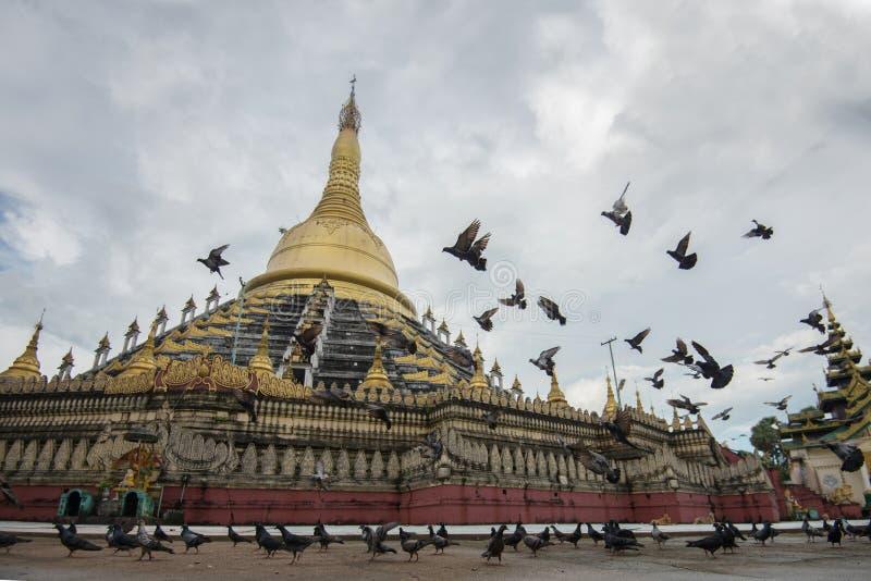 Paya de Mahazedi avec le pigeon la plus grande pagoda dans le bago, myanmar photographie stock libre de droits