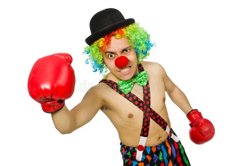 Download Payaso Con Los Guantes De Boxeo Aislados Foto de archivo - Imagen de boxeador, carnaval: 41915898
