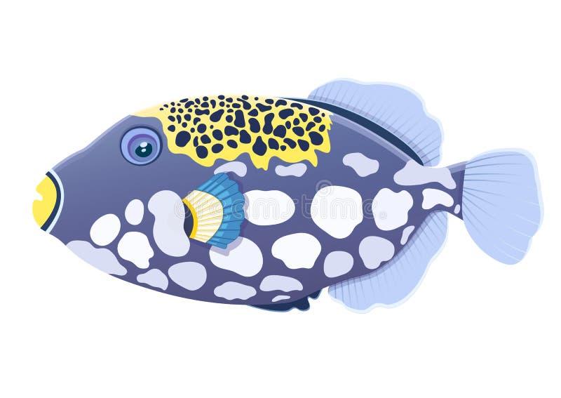 Payaso de los pescados del Triggerfish, dibujo realista de la historieta plana, animal de mar exhausto de la mano, carácter marít stock de ilustración