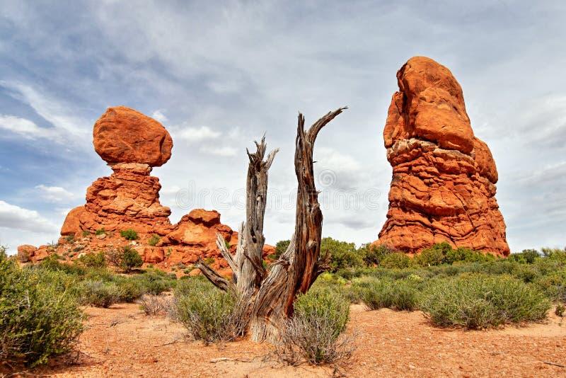 Pays étonnant Bryce Canyon National Park l'utah images stock