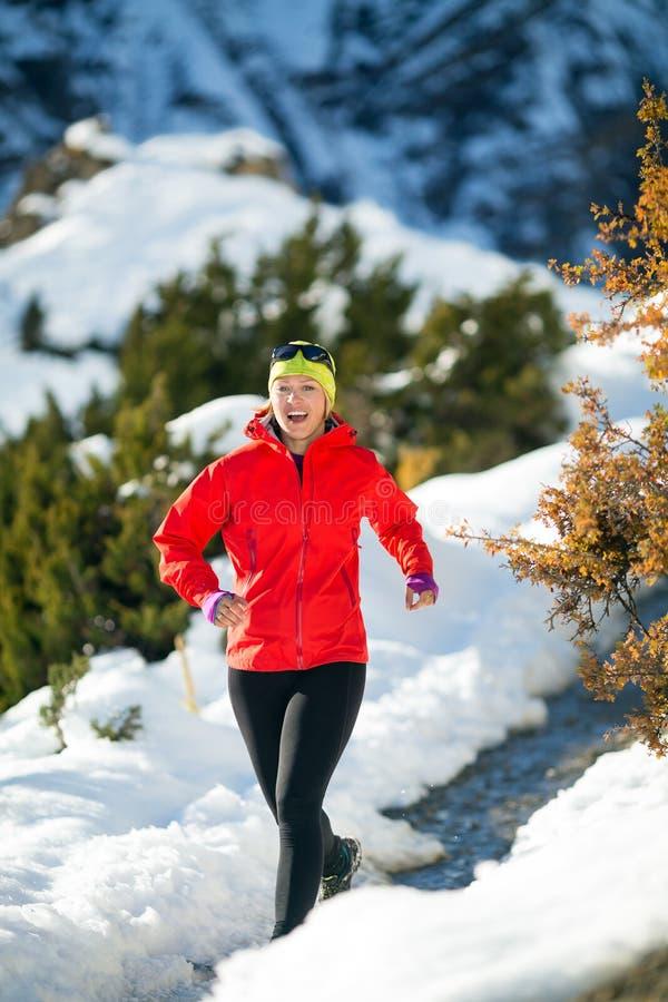 Pays croisé fonctionnant en montagnes d'hiver images libres de droits