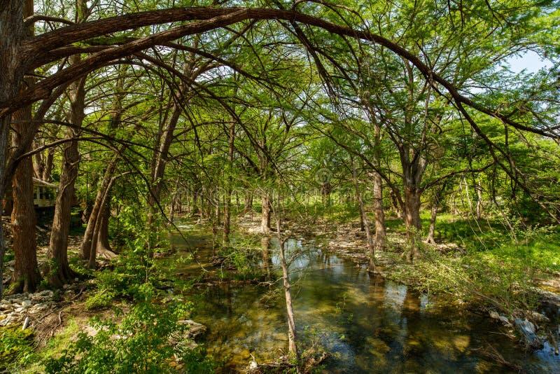 Pays de colline du Texas photographie stock libre de droits
