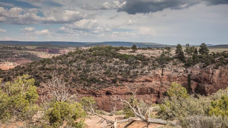 Pays de Navajo photographie stock libre de droits