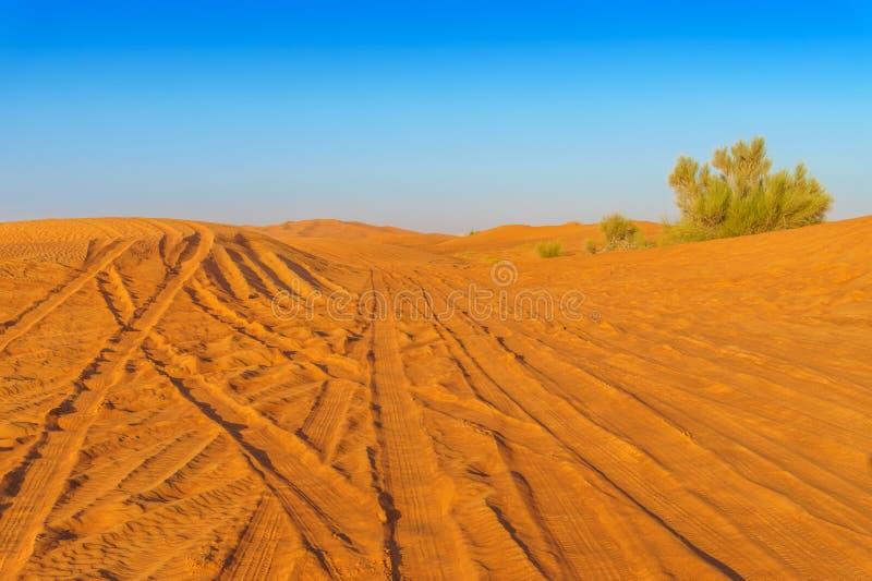 Paysage à sable jaune de dunes de désert avec des voies de pneu images stock