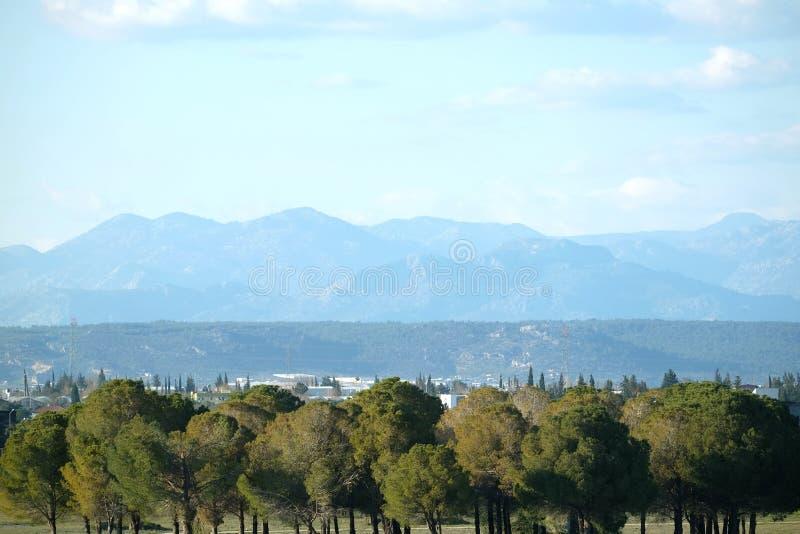 Paysage égalisant rural avec des arbres à l'avant montagnes et de hautes loin photographie stock