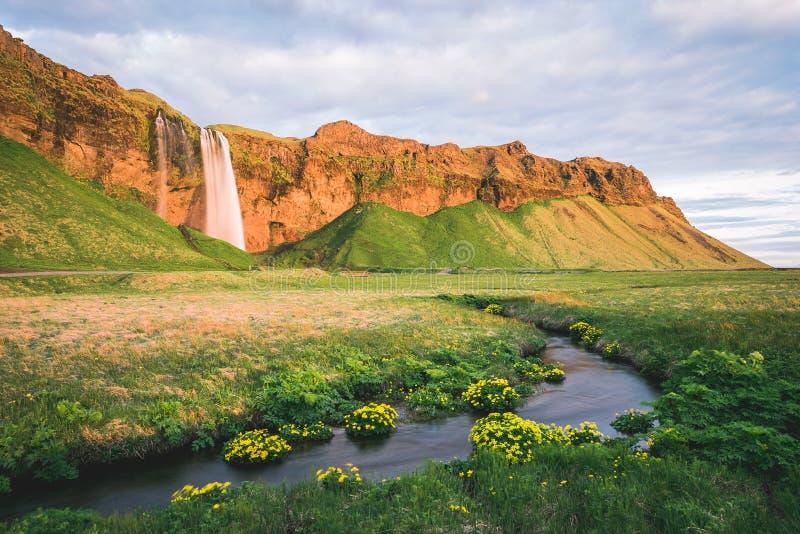 Paysage étonnant avec la cascade de Seljalandsfoss en Islande photos stock