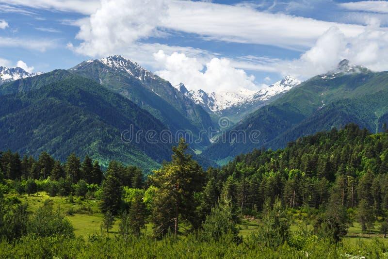 Paysage étonnant des collines vertes couvertes de montagnes d'herbe et de neige le jour ensoleillé d'été en Géorgie photographie stock libre de droits