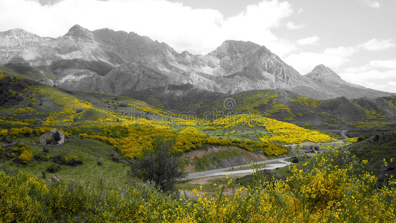 paysage image stock