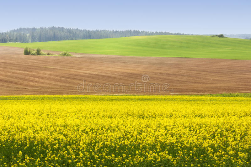 Paysage photos stock