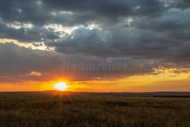 Paysage africain avec l'herbe grande et les nuages foncés au coucher du soleil images stock