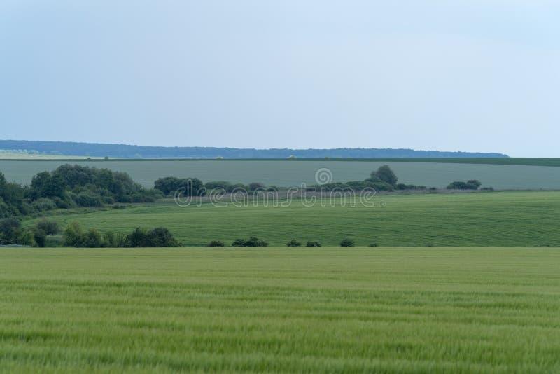 Paysage agricole dans la région de Podolia de l'Ukraine photo libre de droits