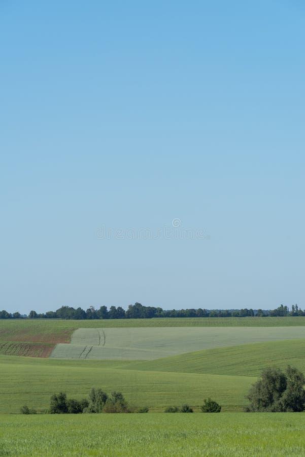 Paysage agricole dans la région de Podolia de l'Ukraine images libres de droits