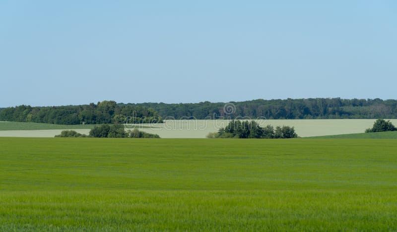 Paysage agricole dans la région de Podolia de l'Ukraine images stock