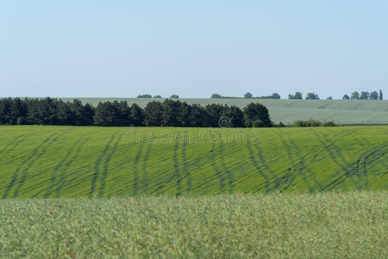 Paysage agricole dans la région de Podolia de l'Ukraine image stock