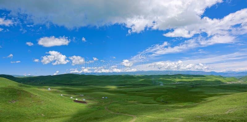 Paysage alpin de prairie images stock