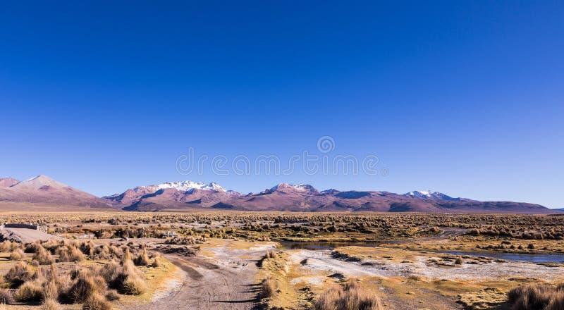 Paysage andin élevé de toundra dans les montagnes des Andes photographie stock