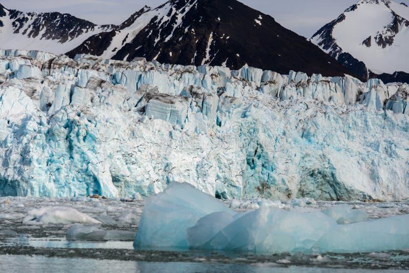 Paysage arctique dans le Svalbard avec le glacier dans l'heure d'été photo stock