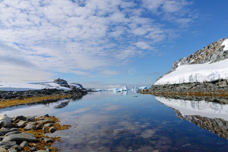 Paysage arctique dans le Svalbard avec le vêlage de glacier image libre de droits