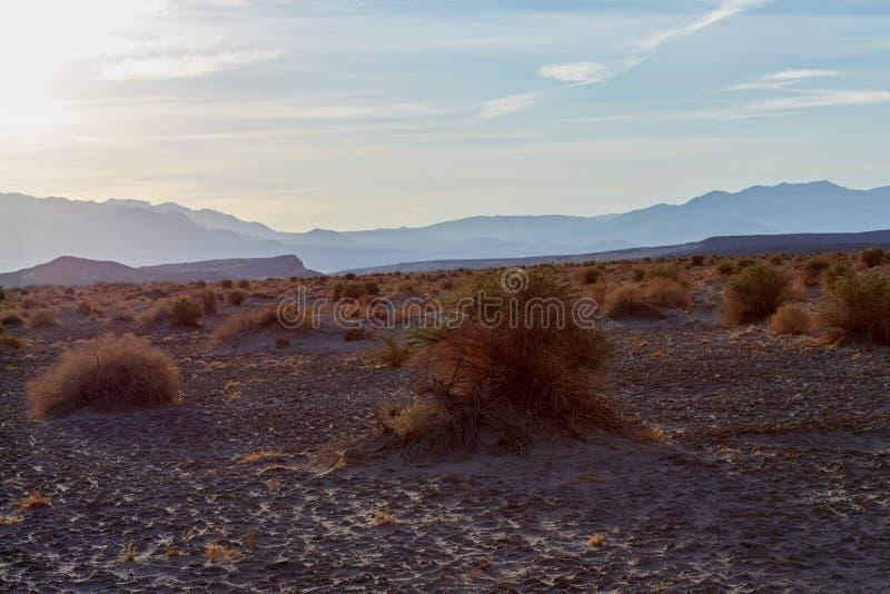 Paysage aride de parc national de Death Valley photographie stock libre de droits