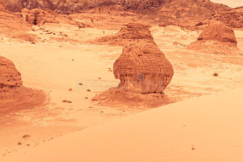Paysage aride Sinai, Egypte de désert d'or photo stock