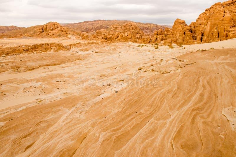 Paysage aride Sinai, Egypte de désert d'or image stock